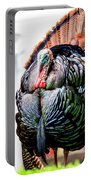 Male Turkey Portable Battery Charger