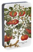 Tomato, 1613 Portable Battery Charger