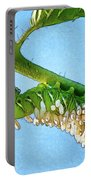 Tomato Hornworm Portable Battery Charger