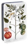 Tomato Plant, 1735 Portable Battery Charger