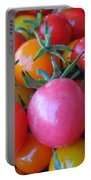 Tomato Rainbow Portable Battery Charger
