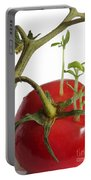 Tomato Seedlings Sprouting Portable Battery Charger