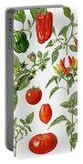 Tomatoes And Related Vegetables Portable Battery Charger
