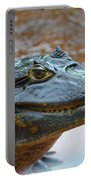 Toothy Gator Portable Battery Charger