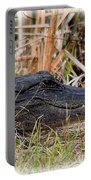 Alligator Toothy Grin 2 Portable Battery Charger