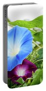 Top Of The Morning Glories Portable Battery Charger