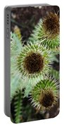Top Thistle  Portable Battery Charger