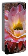 Torch Cactus Flower Portable Battery Charger