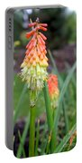 Torch Lily Flower Portable Battery Charger