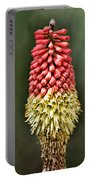 Torch Lily Portable Battery Charger