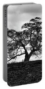 Tortue Oak Portable Battery Charger