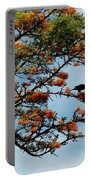 Touch Of Orange Portable Battery Charger