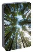 Towering Fir Trees In Oregon Forest State Park Portable Battery Charger