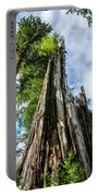 Towering Trees Portable Battery Charger
