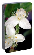 Tradescantia Flower Portable Battery Charger