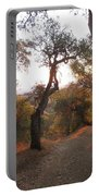 Trail At Sunrise Portable Battery Charger