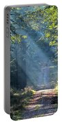 Trail In Morning Light Portable Battery Charger