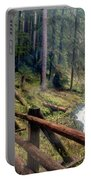 Trail Over Sol Duc Falls Bridge In Olympic National Park Portable Battery Charger