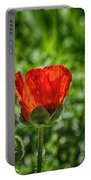 Translucent Poppy Portable Battery Charger