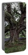 Treaty Oak 12 14 2015 027 Portable Battery Charger
