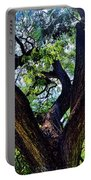 Tree 105 Portable Battery Charger