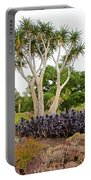 Tree And Succulents In Huntington Desert Gardens In San Marino-california Portable Battery Charger