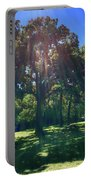 Tree Bathed In Sun Portable Battery Charger