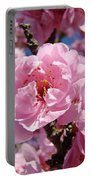 Tree Blossoming Pink Spring Blue Sky Baslee Troutman Portable Battery Charger