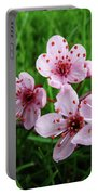 Tree Blossoms 4 Spring Flowers Art Prints Giclee Flower Blossoms Portable Battery Charger