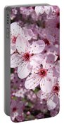 Tree Blossoms Pink Spring Flowering Trees Baslee Troutman Portable Battery Charger