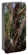 Tree Branch Texture 1 Portable Battery Charger