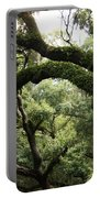 Tree Drama Portable Battery Charger