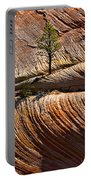 Tree In Flowing Rock Portable Battery Charger