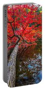 Tree In The Pond Portable Battery Charger