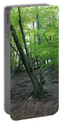 Tree In The Woods Portable Battery Charger