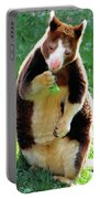Tree Kangaroo Portable Battery Charger