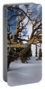 Tree Life In Winter Portable Battery Charger