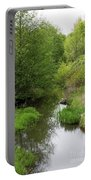 Tree Mirror In Stream 2 Portable Battery Charger
