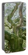 Tree Of History Portable Battery Charger