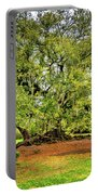 Tree Of Life 2 - Paint  Portable Battery Charger