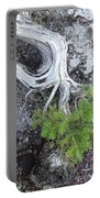 Tree On Rock Portable Battery Charger