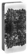 Tree Reflection In Black And White Portable Battery Charger