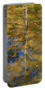 Tree Reflections Portable Battery Charger