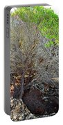 Tree Rock And Life Portable Battery Charger