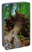Tree Root Ball Portable Battery Charger