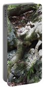 Tree Roots On The Bank Portable Battery Charger