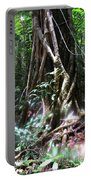 Tree Sprites Portable Battery Charger