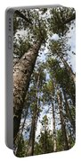 Tree Stand Portable Battery Charger