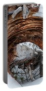 Tree Stump Arch Portable Battery Charger