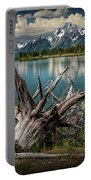 Tree Stump On The Northern Shore Of Jackson Lake At Grand Teton National Park Portable Battery Charger